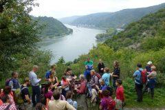 Herbstwanderung Rheinsteig  2014